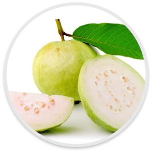 how to make custard apple pulp
